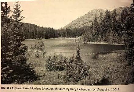 Beaver Lake (1)